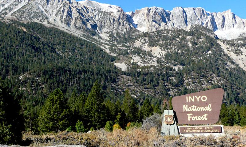 Entering Inyo National Forest