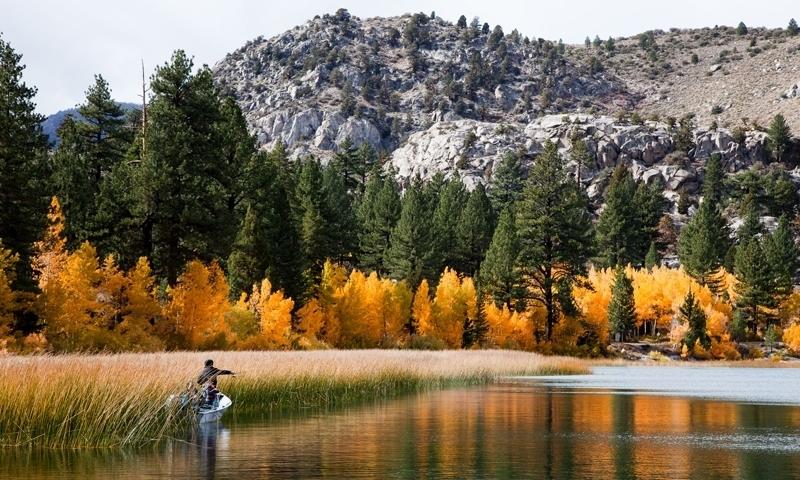 Fly Fishing on June Lake