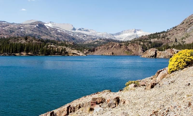 Ellery Lake along Tioga Pass in Yosemite National Park