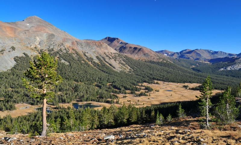 Along Tioga Pass in Yosemite National Park