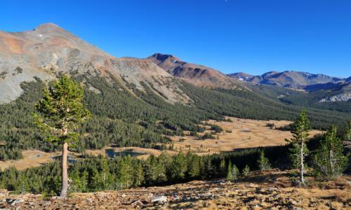 Yosemite Tioga Pass