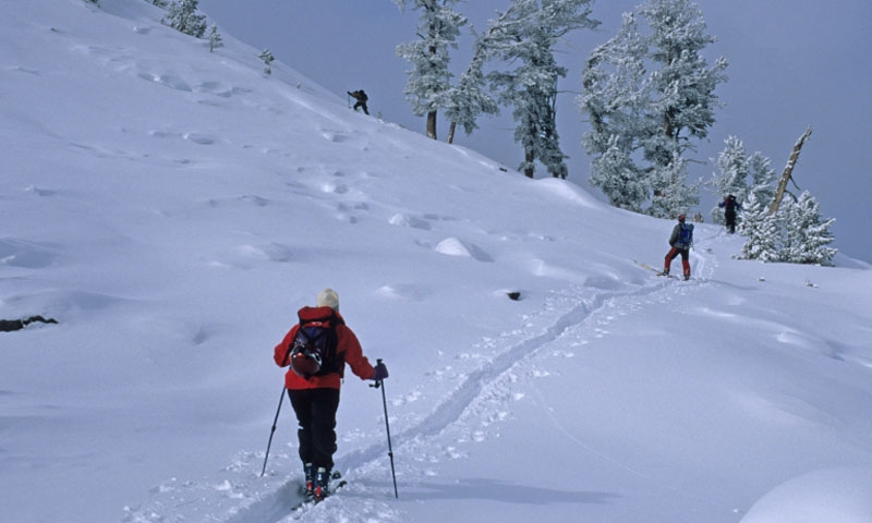 Backcountry Skiing up Odell Mountain in the West Pioneer Mountains of Montana