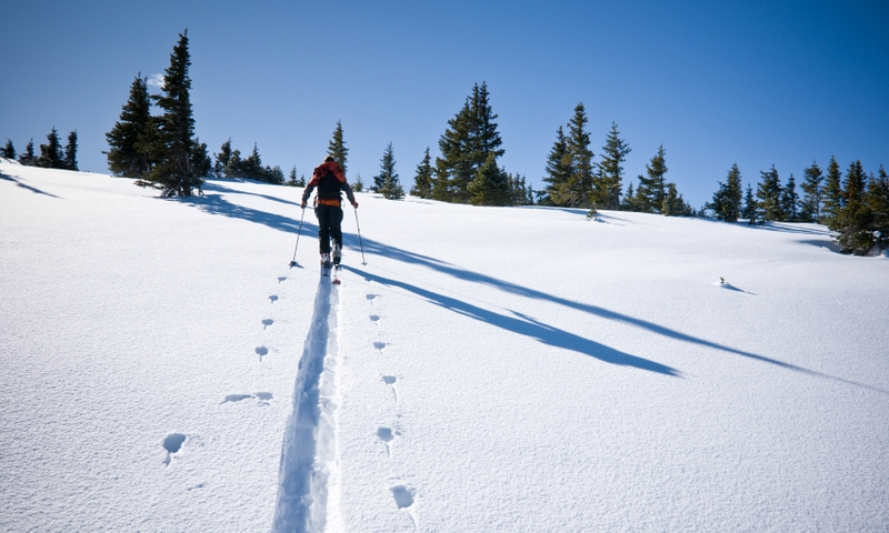 Skiing Backcountry Hiking Winter