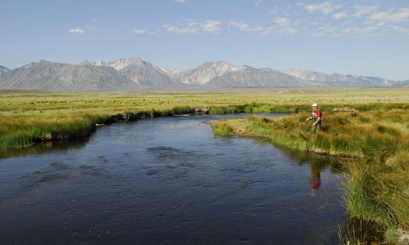 Fly Fishing near Mammoth Lakes