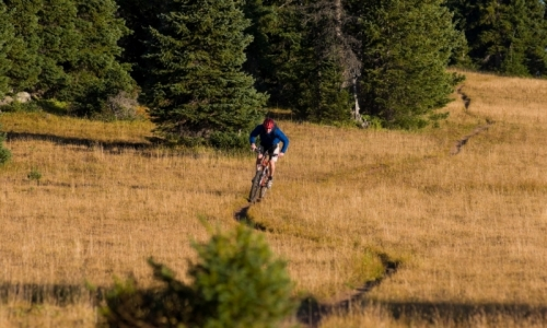 Mammoth Lakes California Mountain Biking